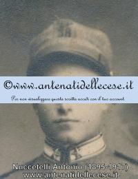 Nuccetelli Anonio (1895-1917)b.jpg