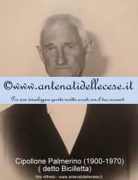 Cipollone Palmerino (1900-1970) b.jpg