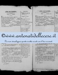 *8787737* 1-Atto di nascita di Micocci Domenico Antonio (02/02/1838) *8787737* 2-Atto di nascita di Blasetti Maria Giuseppa (13/03/1838)